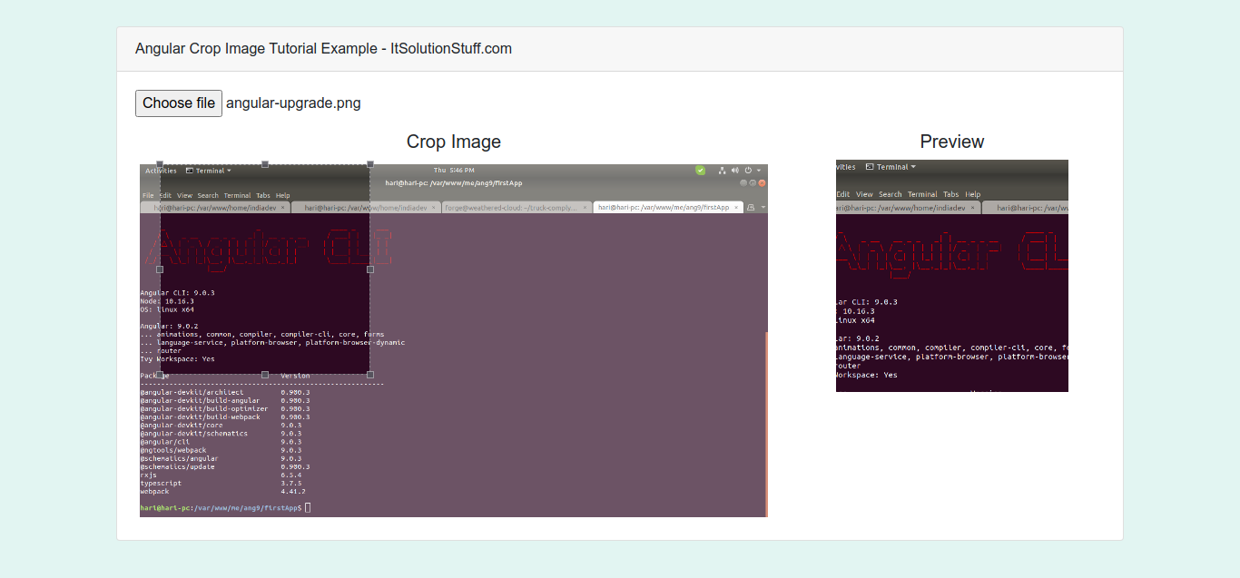 Angular 10 Crop Image Before Upload with Preview Example