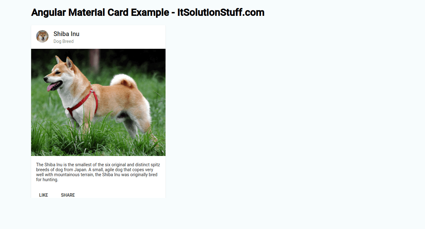 Angular Material Card Example | Angular 9 mat-card