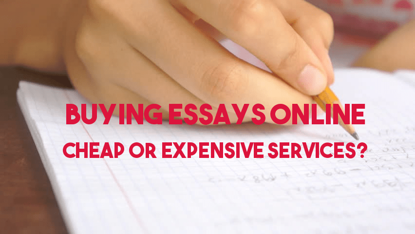 Buying Essays Online: Cheap or Expensive Services?